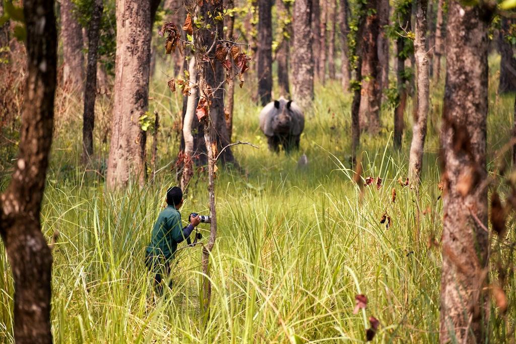 Safari Chitwan National Park 3