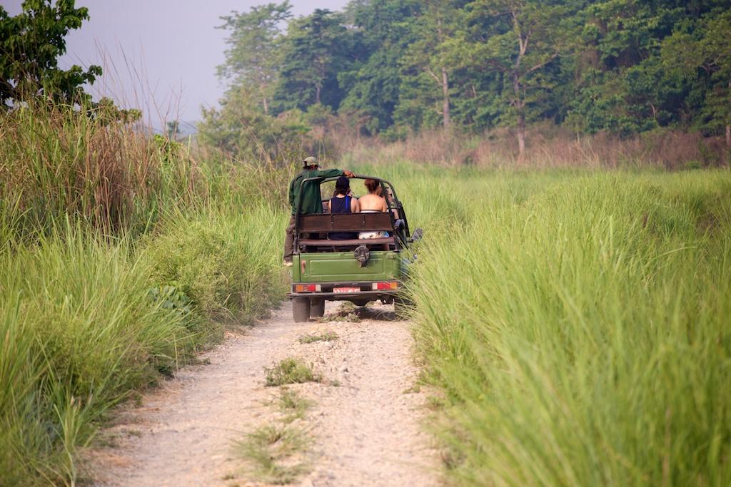Safari Chitwan National Park 8