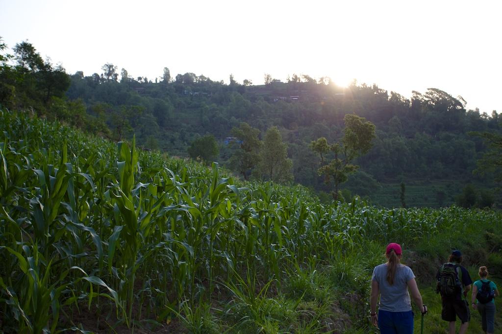 Hiking to Sarangkot 13