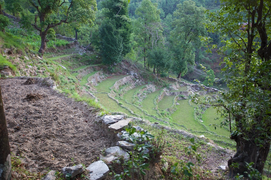 Hiking to Sarangkot 24