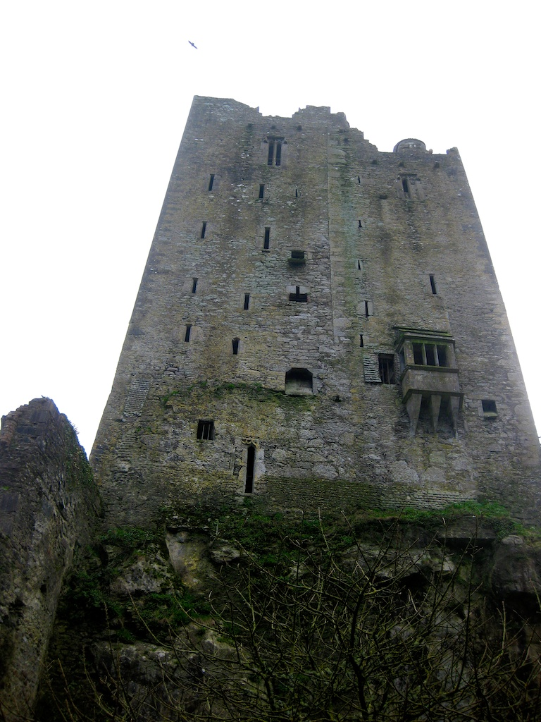 Blarney Stone 12