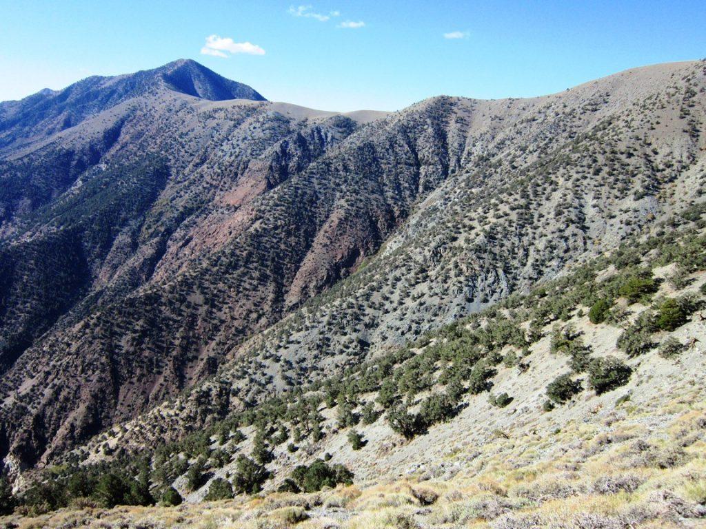 Telescope Peak 16