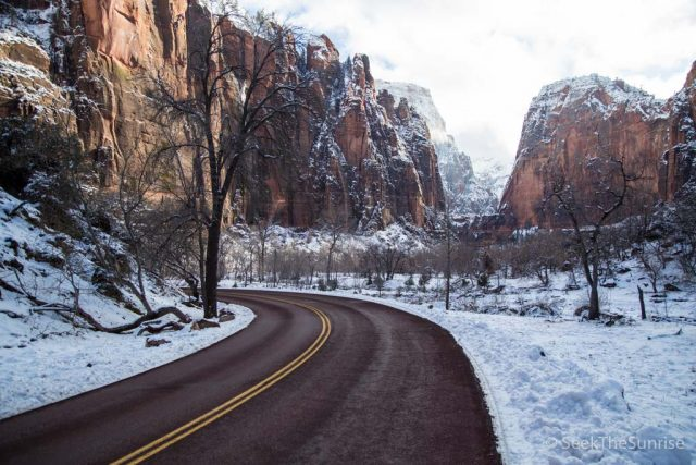 How to Explore Zion National Park in the Winter