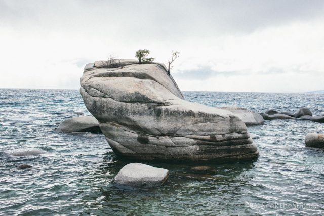 Bonsai Rock in Lake Tahoe: How to Find and Photograph the Bonsai Tree