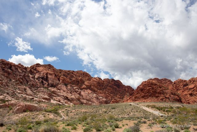 Red Rock Canyon Natural Area: How to Drive, Hike & Explore the Park